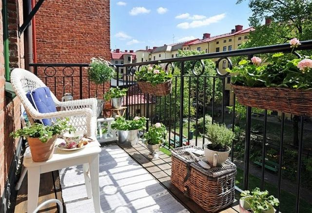 balcon muscate 3