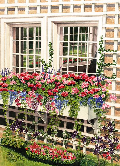 buchart gardens window box